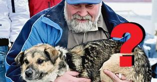Co s nalezeným psem ?