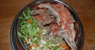 BARF - Výživa psa syrovou stravou - 1. část