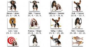 Horoskop pro psy a štěňátka na září 2015