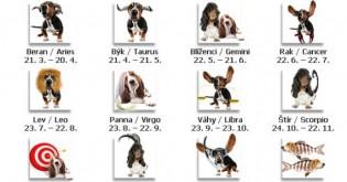 Horoskop pro psy na březen