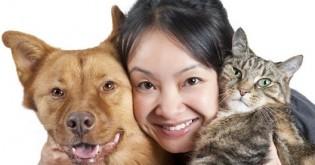Jak zvířata prospívají lidem?