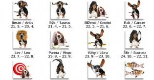 Horoskop pro psy na listopad 2016