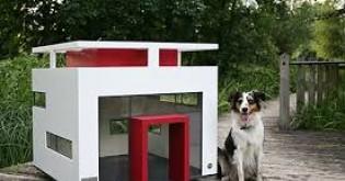 10 rad, které vám pomohou při výběru psí boudy