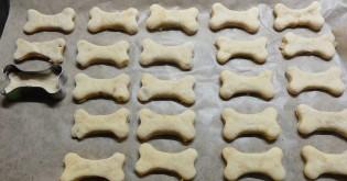 Recepty na zdravé psí sušenky aneb pečeme pejskům